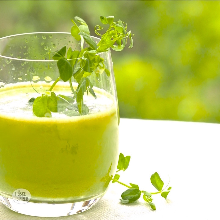 Pea sprout juice FRESH SPROUTS