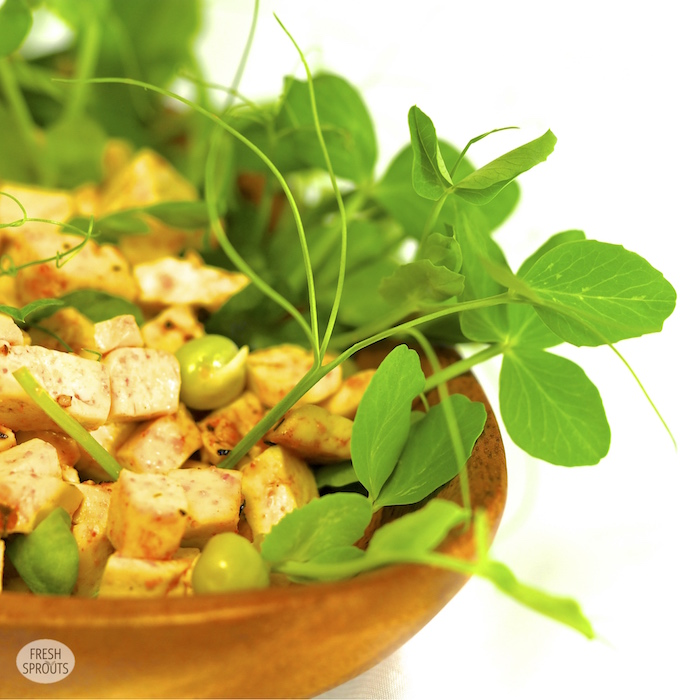 Tofu with pea sprouts and lentil sprouts FRESH SPROUTS