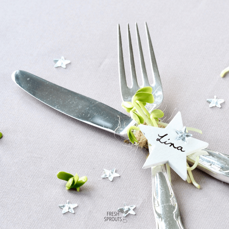 Table settings with sprouts on cutlery FRESH SPROUTS