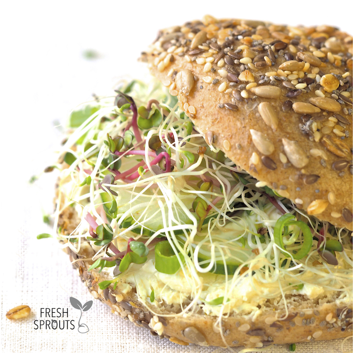 Sprouts in any dish sandwich FRESH SPROUTS