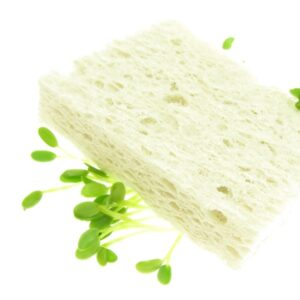 cellulose sponge biodegradable fresh sprouts