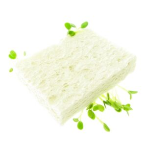 Cellulose sponge biodegradable by fresh sprouts