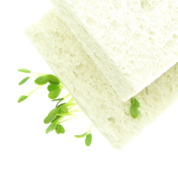 Two cellulose sponges biodegradable by fresh sprouts