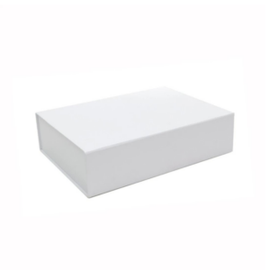 seed storage box in thick card board with magnetic flap