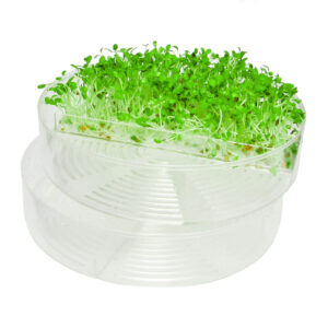Seed trays for SproutPearl transparent sprouter