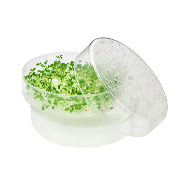 SproutPearl extra lid, seed tray or bottom part