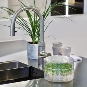 SproutPearl sprouter to grow sprouts in your kitchen