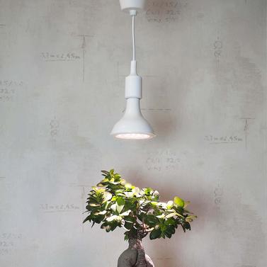 led plant light bulb for microgreens and plants