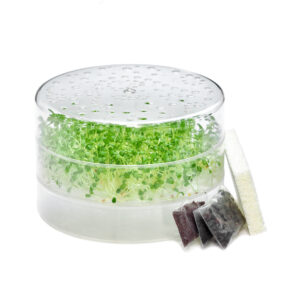 sprouting kit with sproutpearl sprouter