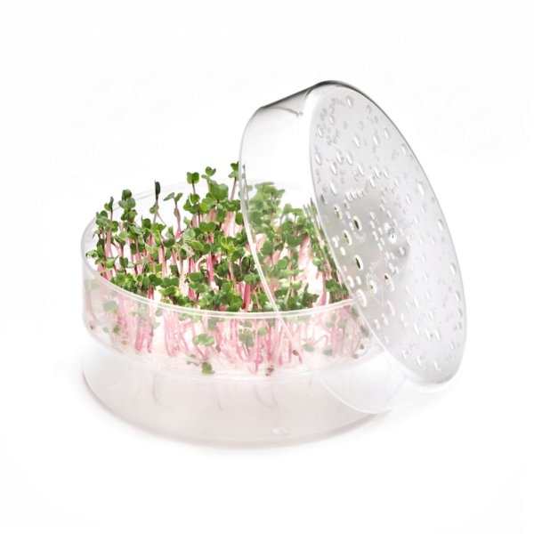 microgreen tray sproutpearl by fresh sprouts